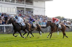 Things to do in Windsor   Races